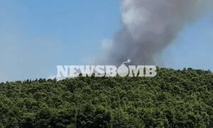 Φωτιά ΤΩΡΑ στον Θεολόγο Φθιώτιδας - Συναγερμός στην Πυροσβεστική (pics)