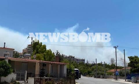 Φωτιά στο Λαύριο: Χωρίς ενεργό μέτωπο η πυρκαγιά - Πολλές διάσπαρτες εστίες