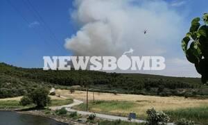 Φωτιά στο Θεολόγο: Δείτε εικόνες από το πύρινο μέτωπο