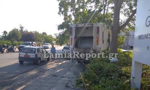 Φθιώτιδα: Σφήκα τσίμπησε οδηγό απορριμματοφόρου - Ακολούθησε πανικός