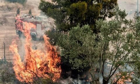 Συναγερμός στην Πυροσβεστική: Φωτιά ΤΩΡΑ στην Κεφαλονιά