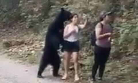 Αρκούδα στήθηκε για selfie δίπλα σε γυναίκα που έκανε πεζοπορία (vids)