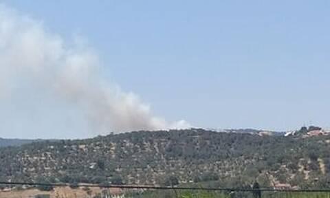 Μεγάλη φωτιά ΤΩΡΑ στη Μυτιλήνη