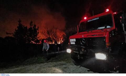 Υπό μερικό έλεγχο η φωτιά στο Ελληνοχώρι