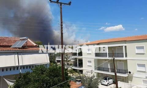 Ανεξέλεγκτη η φωτιά στην Κόρινθο - Ενισχύονται οι δυνάμεις - Εκκενώθηκε οικισμός