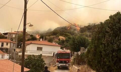 Μεσσηνία: Μαίνεται η φωτιά στο Πεταλίδι - Εκκενώθηκε το χωριό Μαθία