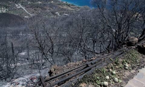 Εισαγγελική παρέμβαση για τις φωτιές σε Κύθηρα και Μάνη το 2017