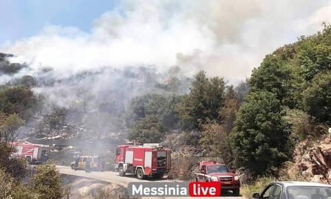 Φωτιά Μεσσηνία: Καλύτερη η εικόνα της πυρκαγιάς στο Πεταλίδι