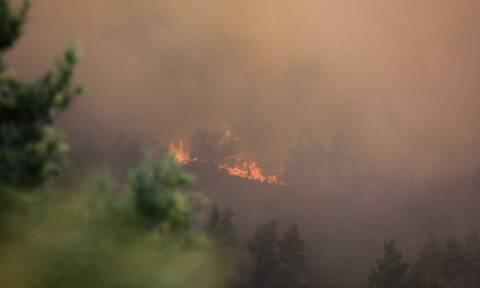 Μάχη με τις φωτιές στην Κορινθία: Δύο μέτωπα σε Λουτράκι και Ισθμό εκτός από τις Κεχριές