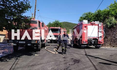 Ηλεία: Οριοθετήθηκε η φωτιά στη Ζαχάρω (pics)