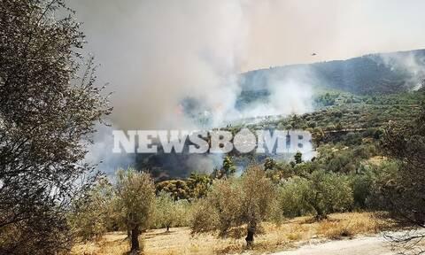Φωτιά - Κορινθία: Μαίνεται η πυρκαγιά στις Κεχριές - Κίνδυνος από τις αναζωπυρώσεις