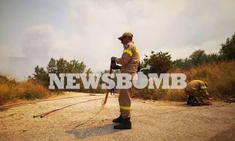 Φωτιά στις Κεχριές: Καρέ-καρέ η μάχη των πυροσβεστών με τις αναζωπυρώσεις