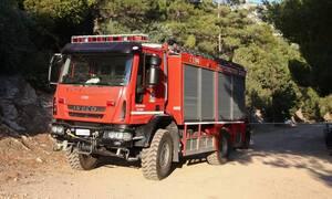 В Греции объявлен повышенный уровень пожарной опасности