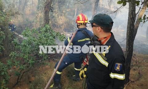 Φωτιά στις Κεχριές: Υπεράνθρωπες προσπάθειες για να σωθεί η Μονή Θεράποντος