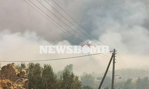 Φωτιά - Κορινθία: Εκτός ελέγχου η φωτιά - Εκκενώνονται οικισμός και κατασκήνωση