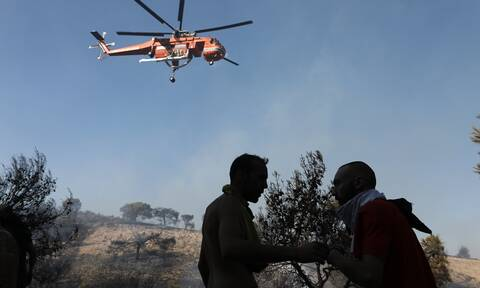 Εβδομήντα δύο δασικές πυρκαγιές εκδηλώθηκαν το τελευταίο 24ωρο