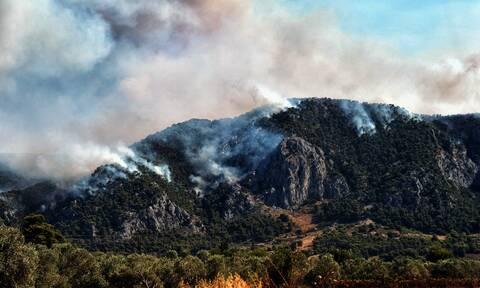 Φωτιά στην Κορινθία: Αυτές είναι οι περιοχές που τίθενται σε κατάσταση έκτακτης ανάγκης