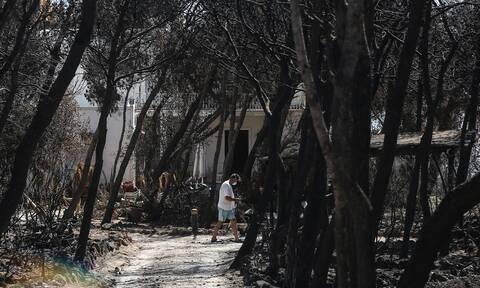 Μάτι - Μακάβριο: Έθαψαν τον Μάιο του 2020 νεκρή από την πυρκαγιά του 2018