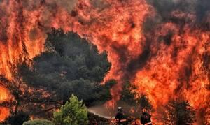 В Греции сотни людей покинули свои дома из-за пожаров