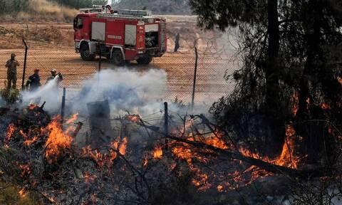 Φωτιά στην Ηλεία: Μάχη με τις φλόγες στο Γραμματικό – Απειλούνται χωριά της Αρχαίας Ολυμπίας