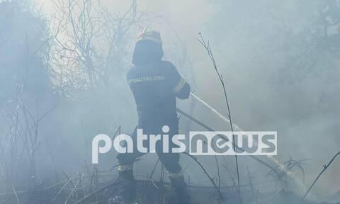 Φωτιά: Συνεχίζεται η μάχη σε Γραμματικό Ηλείας και Κεχριές - Η εικόνα σήμερα