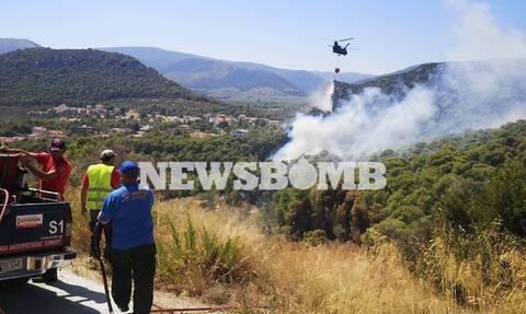 Φωτιά Κεχριές: Βιβλική καταστροφή –  Στάχτη πάνω από 30.000 στρέμματα