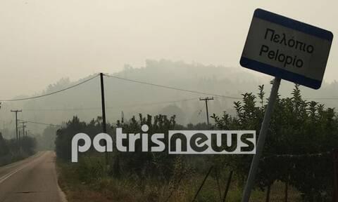 Φωτιά στην Ηλεία: Πυκνοί καπνοί και δύσβατα σημεία οι «εχθροί» των πυροσβεστών