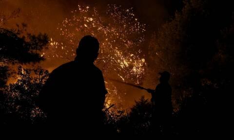 Σε ύφεση η φωτιά στη Ηλεία - Μαίνεται στις Κεχριές