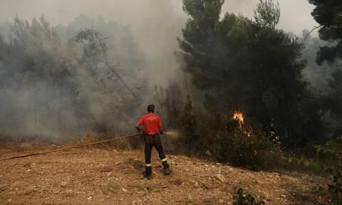Φωτιά στις Κεχριές: Διάσπαρτες εστίες εξακολουθούν να καίουν για πέμπτη μέρα