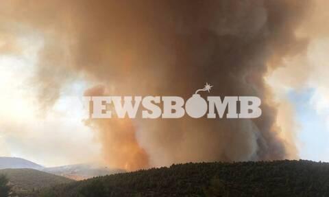 Φωτιά στις Κεχριές: Κρανίου τόπος περισσότερα από 32.000 στρέμματα (χάρτης)
