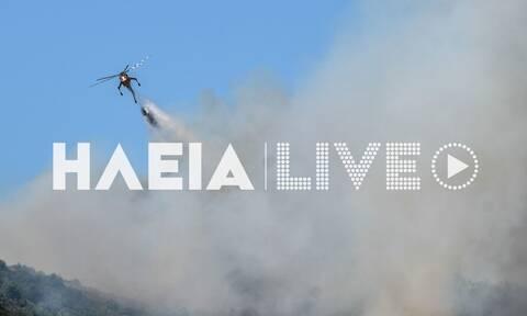 Φωτιά στην Ηλεία: Καίει δασική έκταση στην περιοχή Πανόπουλο
