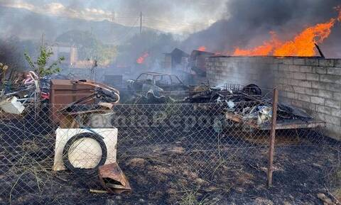 Φθιώτιδα: Συναγερμός για πυρκαγιά στο Παλιούρι (pics)