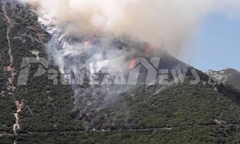 Φωτιά στην Πρέβεζα - Μεγάλη κινητοποίηση της Πυροσβεστικής