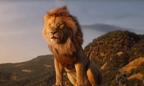 Λιοντάρι επιτέθηκε σε τουρίστες - Δεν θα πιστεύετε τη συνέχεια (vid)