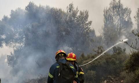 Φωτιά ΤΩΡΑ στον Ασπρόπυργο: Διακόπηκαν τα δρομολόγια του Προαστιακού