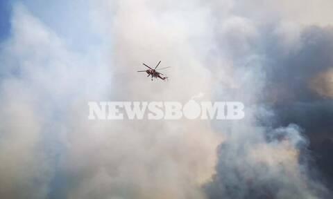 Συναγερμός στην Πυροσβεστική: 62 δασικές πυρκαγιές το τελευταίο 24ωρο