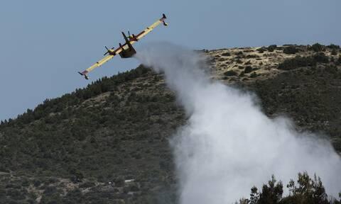 Μεγάλη φωτιά στην Επίδαυρο: Ενισχύθηκαν οι δυνάμεις της Πυροσβεστικής