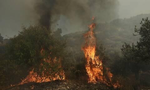 Φωτιά ΤΩΡΑ στις Σπέτσες