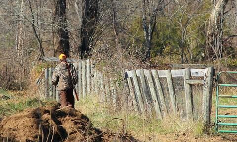 Κυνηγετική περίοδος: Ο ΔΕΔΔΗΕ εφιστά την προσοχή των κυνηγών