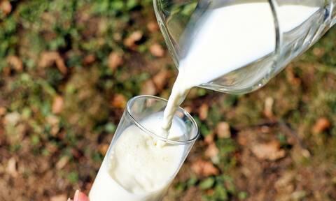 Το κατσικίσιο γάλα είναι πιο υγιεινό για τα παιδιά;