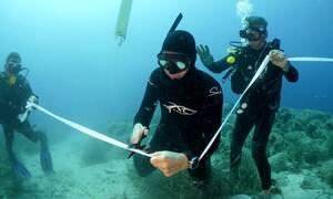 Αλόννησος: Εγκαινιάστηκε το πρώτο υποβρύχιο μουσείο της Ελλάδας - Ο «Παρθενώνας των ναυαγίων»