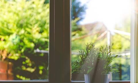 Κοζάνη: Δείτε τι εισέβαλε σε αυλή σπιτιού – Δεν πίστευαν στα μάτια τους (pics)