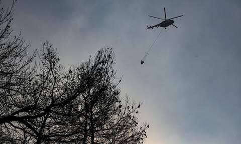 Φωτιά: Μεγάλη πυρκαγιά στο Ναύπλιο