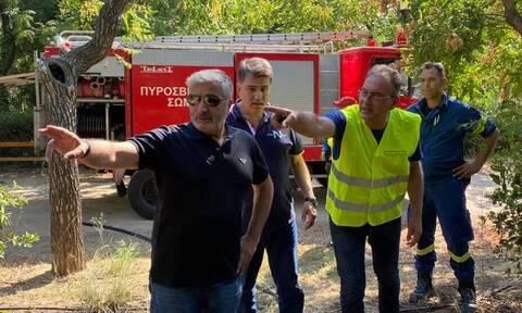Πατούλης: Βρέθηκαν 8 εμπρηστικοί μηχανισμοί στο Πεδίον του Άρεως