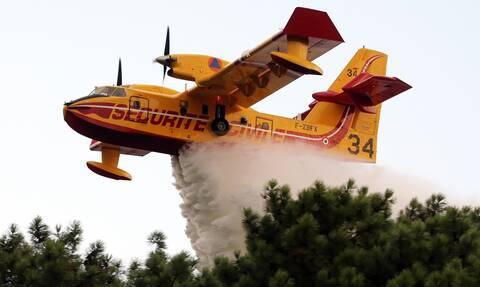 Γαλλία: Εκκενώνονται κάμπινγκ κοντά στη Μασσαλία λόγω πυρκαγιάς