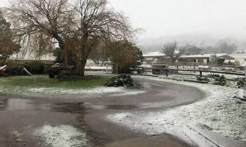 Ο καιρός τρελάθηκε: Σε αυτή τη χώρα είχε να χιονίσει από το 1970 – Δείτε τι συνέβη (pics)