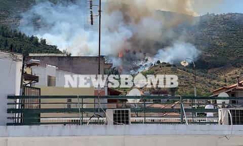 Φωτιά ΤΩΡΑ στην Αταλάντη: Βρίσκεται κοντά σε σπίτια