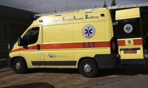 Λαμία: Δυο άτομα στο νοσοκομείο από δάγκωμα οχιάς