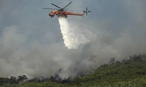 Μεγάλη φωτιά ΤΩΡΑ στα Κύθηρα: Κοντά σε σπίτια οι φλόγες