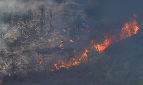 Μαίνεται η πυρκαγιά στα Κύθηρα: Ενισχύονται οι δυνάμεις της Πυροσβεστικής